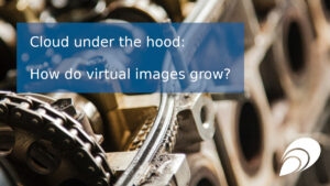 Cloud under the hood: how do virtual images grow?